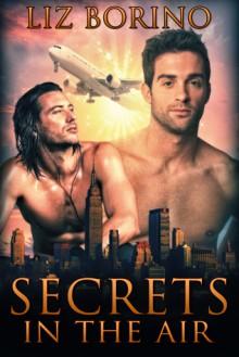 Secrets in the Air - Liz Borino