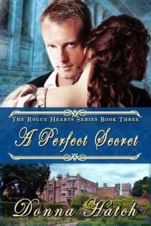 A Perfect Secret - Donna Hatch