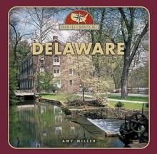 Delaware - Amy Miller