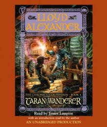 Taran Wanderer (The Chronicles of Prydain, Book 4) - Lloyd Alexander,James Langton