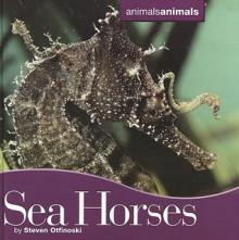 Seahorses - Steven Otfinoski