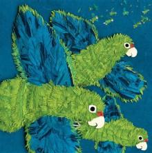Parrots Over Puerto Rico - Susan L. Roth