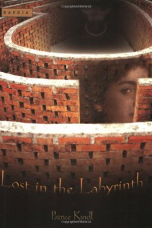 Lost in the Labyrinth - Patrice Kindl