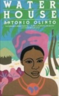 The Water House - Antonio Olinto