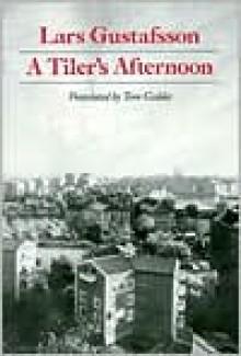 A Tiler's Afternoon - Lars Gustafsson
