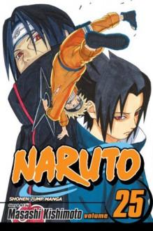 Naruto, Vol. 25: Brothers -