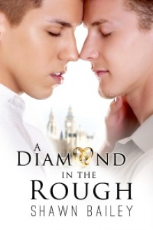 A Diamond in the Rough - Shawn Bailey