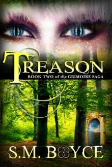 Treason - S.M. Boyce