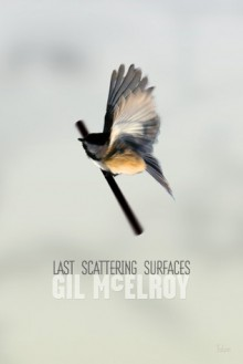 Last Scattering Surfaces - Gil McElroy