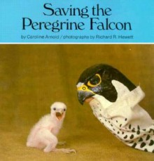 Saving the Peregrine Falcon - Caroline Arnold, Richard R. Hewett