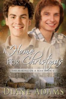 A Home For Christmas - Diane Adams