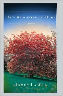 It's Beginning to Hurt - James Lasdun