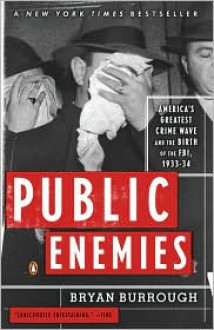 Public Enemies (Audio) - Bryan Burrough, Richard Davidson