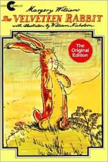 The Velveteen Rabbit -