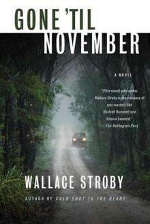 Gone 'til November - Wallace Stroby