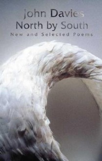 North by South: New and Selected Poems - John Davies