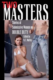 Two Masters: Erotic Stories of Submissive Women on Double Duty - N.T. Morley, Erin Sanders, Rebecca Ford, Erica Dumas, Derek McDaniel, Corey Claire, Meadow Parker, Amber Larkin, Peter Allen