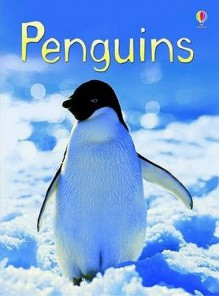 Penguins (Usborne Beginners) - Emily Bone