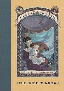 The Wide Window - Brett Helquist,Lemony Snicket,Michael Kupperman