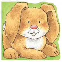 Carry-Along Bunny (Carry-Along Pets) - Fiona Hayes, Kate Davies