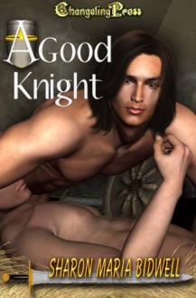 A Good Knight - Sharon Maria Bidwell