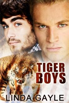 Tiger Boys - Linda Gayle