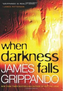 When Darkness Falls - James Grippando