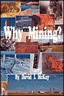 Why Mining? - David L. McKay