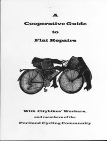 A Cooperative Guide to Flat Repairs - Mark Lipe