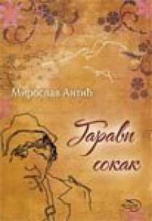 Garavi sokak - Miroslav Antić