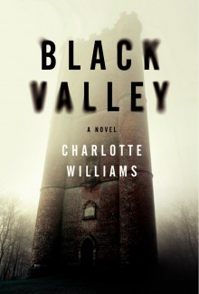 Black Valley: A Novel - Charlotte Williams