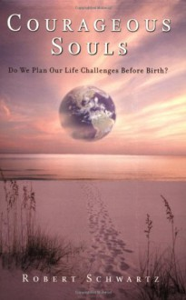 Courageous Souls: Do We Plan Our Life Challenges Before Birth? - Robert Schwartz