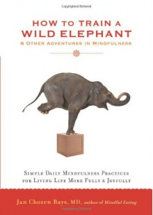 How to Train a Wild Elephant: And Other Adventures in Mindfulness - Jan Chozen Bays