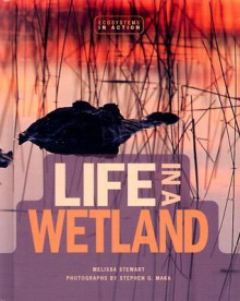 Life in a Wetland - Melissa Stewart