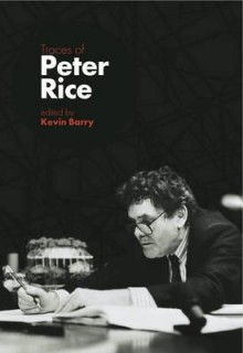 Traces of Peter Rice - Kevin Barry