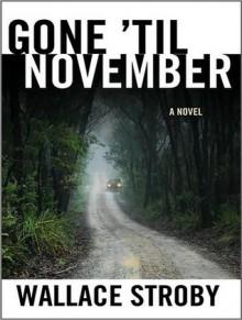 Gone 'til November: A Novel - Wallace Stroby, Karen White