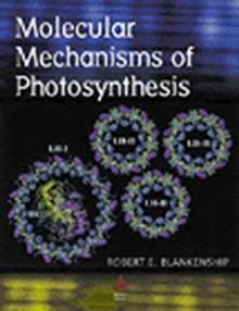 Molecular Mechanisms of Photosynthesis - Robert E. Blankenship