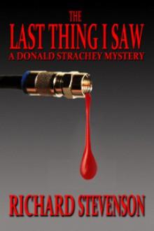 The Last Thing I Saw - Richard Stevenson