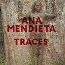 Ana Mendieta: Traces - Stephanie Rosenthal