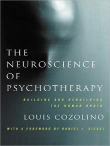 The Neuroscience of Psychotherapy: Healing the Social Brain - Louis Cozolino
