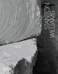 Stanton Williams: Volume - David Taylor, Ken Arnold, Irenee Scalbert, Stephen Bayley
