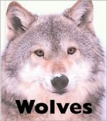 Wolves - Michael George