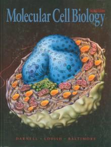 Molecular Cell Biology - James E. Darnell, Harvey Lodish, David Baltimore