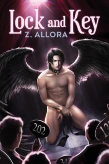 Lock and Key - Z. Allora