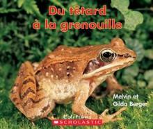 Du Tetard a la Grenouille - Melvin A. Berger