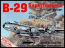 B-29 Superfortress in Action - Aircraft No. 165 - Larry Davis