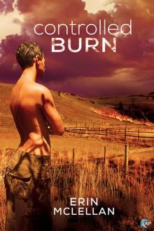Controlled Burn - Erin McLellan