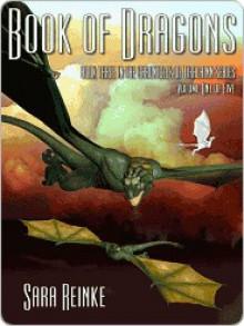 Book of Dragons: Volume One of Five (Chronicles of Tiralainn, #3.1) - Sara Reinke
