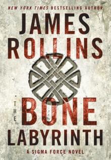 The Bone Labyrinth - James Rollins