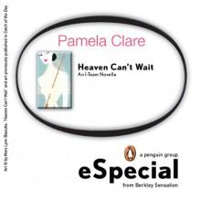 Heaven Can't Wait (I-Team, #1.5) - Pamela Clare